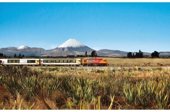 NEW North Island Coach & Rail Holiday (Single Traveller)