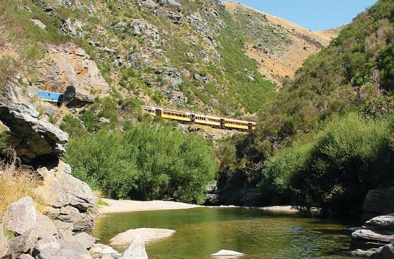 Dunedin to Pukerangi One Way Journey