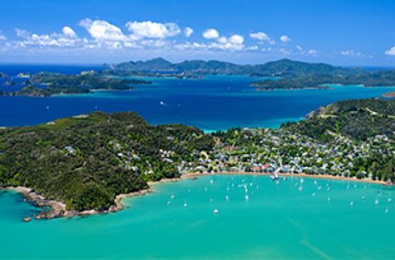 Auckland to Paihia + Waitangi Tour + Russell Mini Tour + Lunch